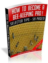 How To Become A Bee Keeping Pro