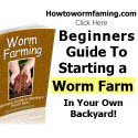 Worm Farming - Beginners Guide To Starting A Worm Farm